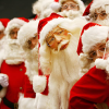 Acesso neste Natal nas Portarias